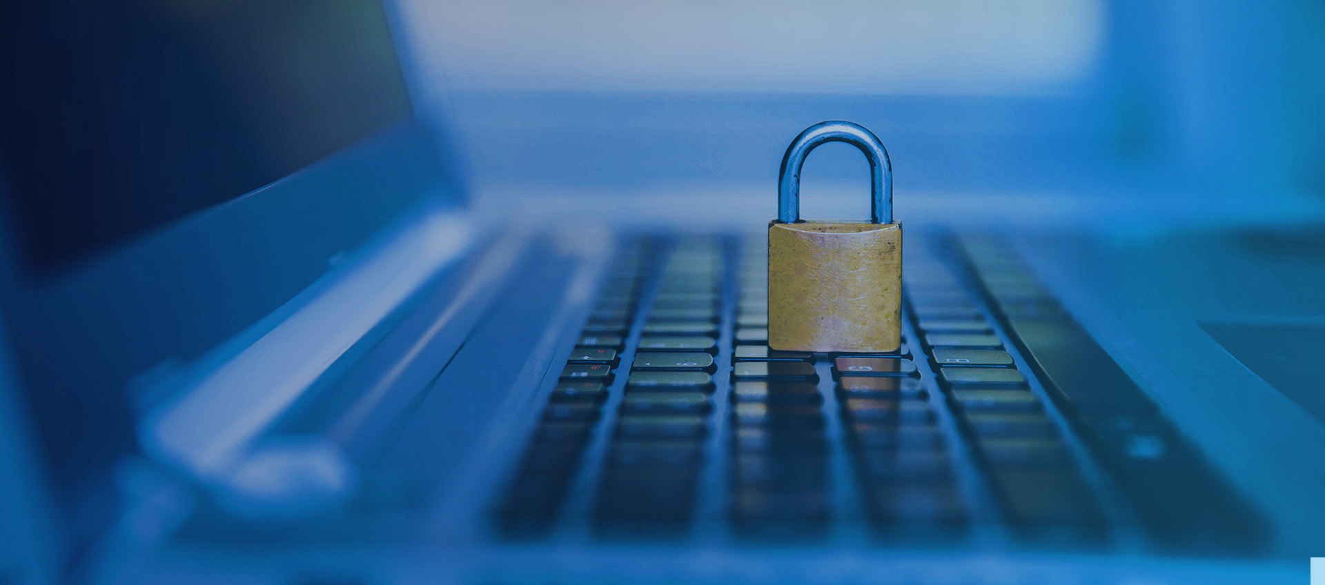 SAP GRC SAP Security, Cyber Protection, Data Privacy
