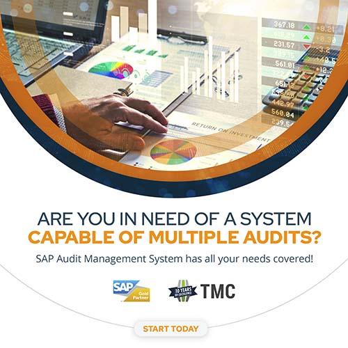 SAP AMS audit pakistan